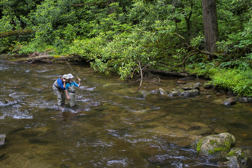 Fly Casting lesson in a Smokies creek